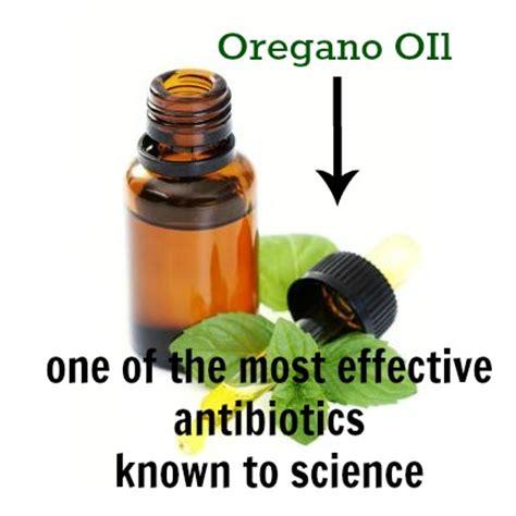 wild oregano oil bartholin cyst picture 10