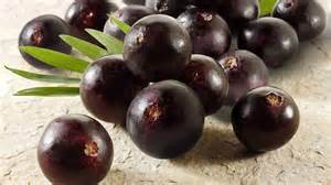 acai superfood picture 10
