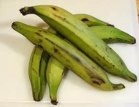 plantain picture 10