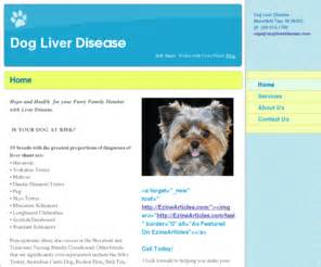 yorkie liver problems picture 2