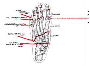 metatarsal phalangeal joint injury picture 2