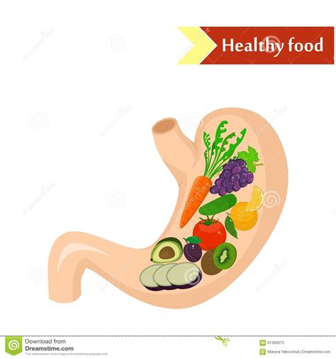 foods for digestion picture 1
