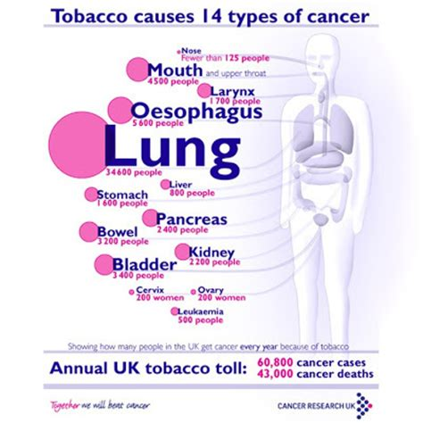 can you be allergic to tobacco smoke picture 3