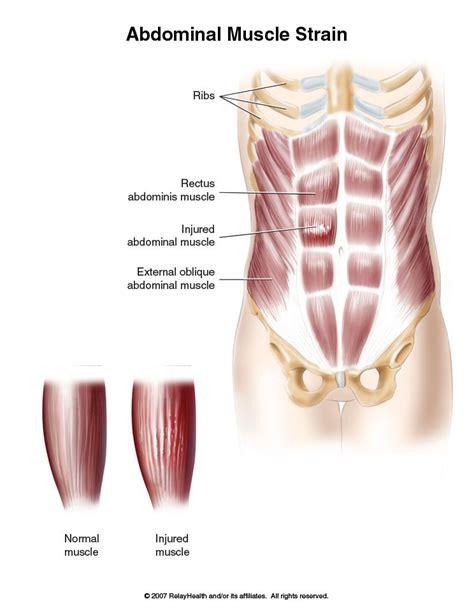 abdominal picture 5