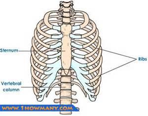 woman body scissor man ribs picture 7