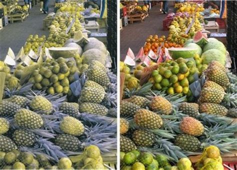 color blindness cure picture 7