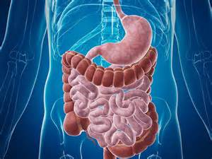 hemorrhoid treatment medscape picture 5
