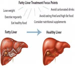 fatty liver causes picture 7