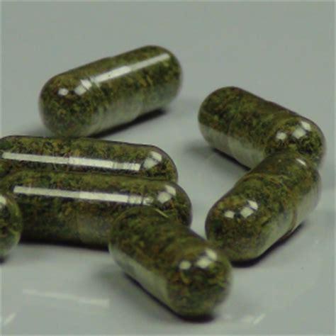 can you smoke marijuana when taking probiotics picture 9