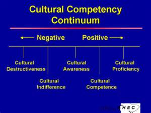 cultural competence continuum and aging picture 13