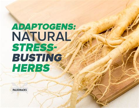 best natural adaptogens picture 5