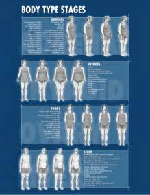 diet by body type picture 5