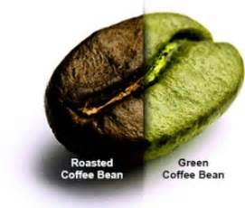 green coffee bean extract 2013 picture 7