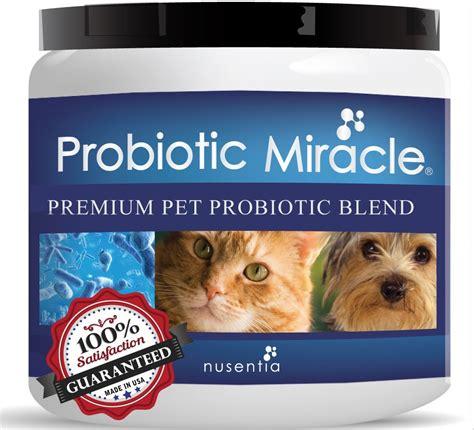 probiotics cause loose stool picture 2