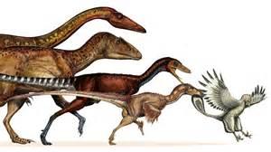 dinosaur h picture 3