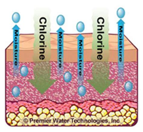 chlorine effects on skin picture 9