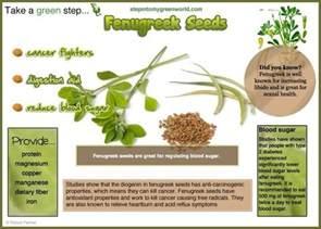 fenugreek seeds benefits warnings picture 2