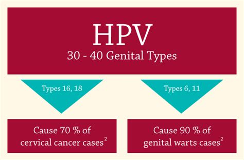 genital warts picture and their related homeopathy picture 4