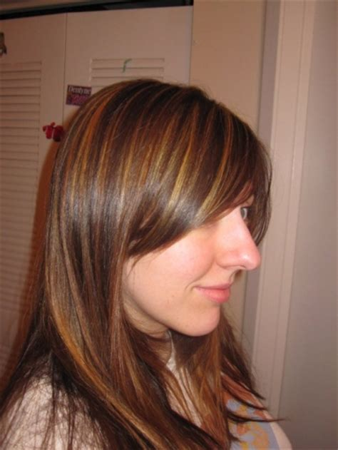 brown hair highlights picture 1