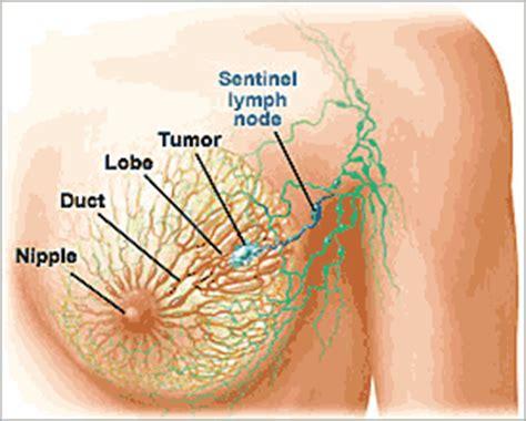 natural women node picture 7