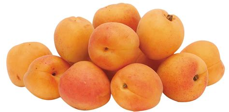 apricots health picture 18