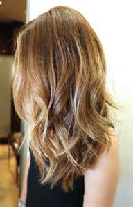 blonde hair to brown picture 14