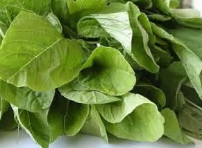 green bangla health picture 10