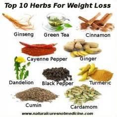 herbs and es for weight loss picture 2