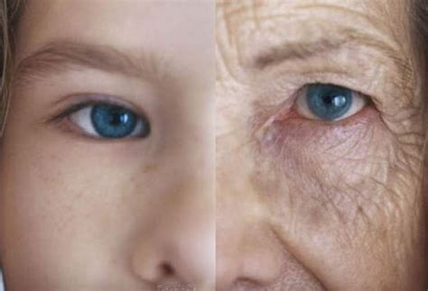 ageing picture 14