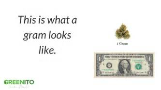 buy weed grams picture 2