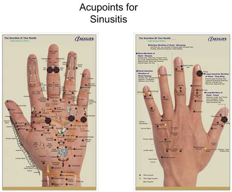 acupuncture for erectile dysfunction picture 1