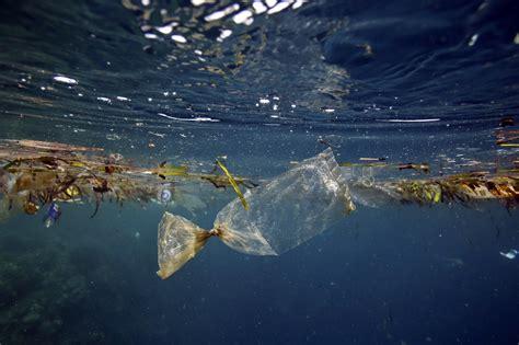 ocean debris picture 1