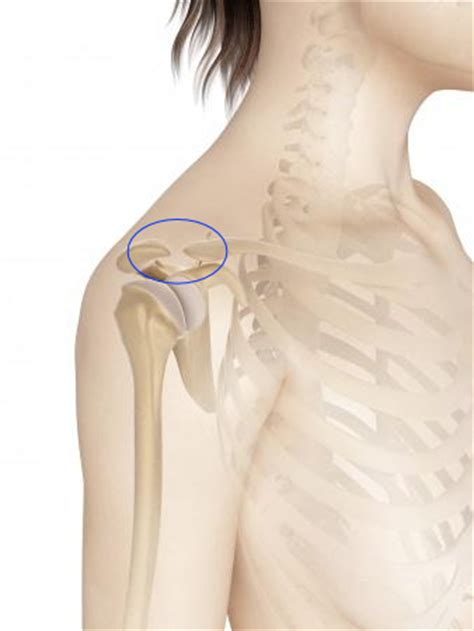 bone and joint specialists picture 3