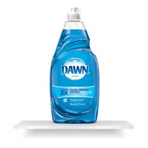 brush h with dawn dish soap picture 1