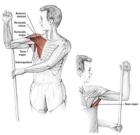 thyroid and muscle arm aches solution picture 12