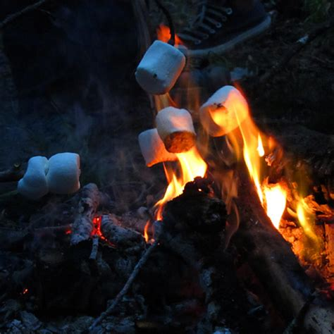 campfire marshmallows picture 3