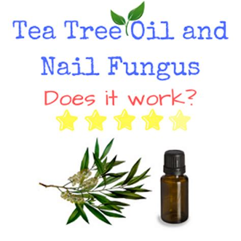 tea tree oil fungus prevention magazine picture 13