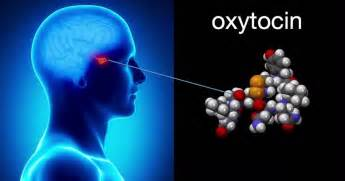 what vitamins help oxytocin levels picture 5