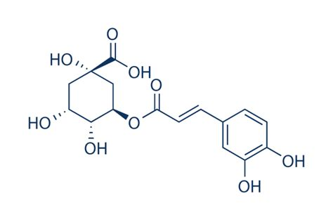 chlorogenic picture 14