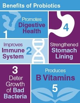 probiotics and healthy gut bacteria picture 5