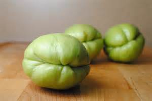papaya pear squash picture 3
