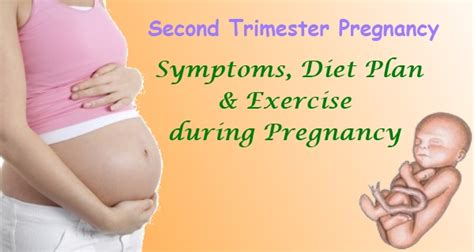 weight loss in second trimester picture 14