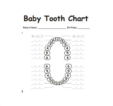 child's teeth chart picture 5