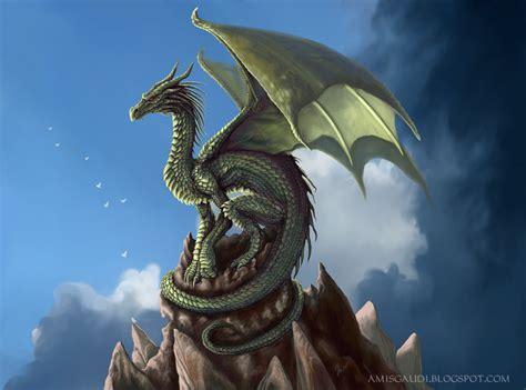 dragon picture 13