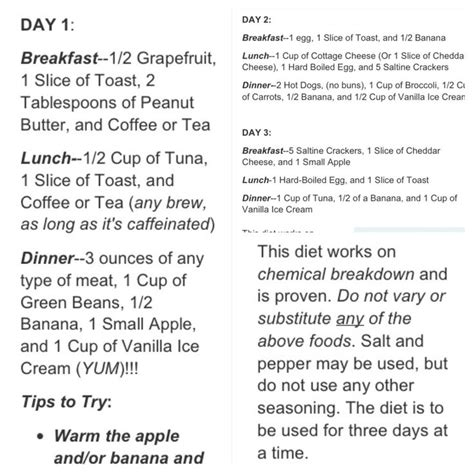 chemical breakdown diet picture 9
