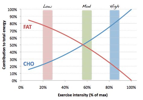 fat burning carbs picture 3