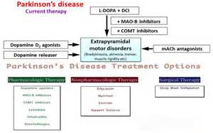 parkinsons disease and herbal treatments picture 1