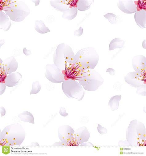 white petal japanese translatiin picture 5