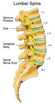 facet joint pain picture 11