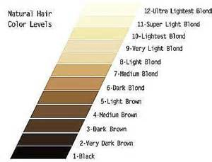 clarol hair chart picture 9